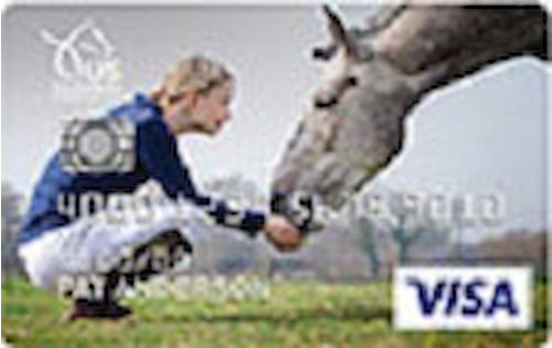usef cash rewards credit card