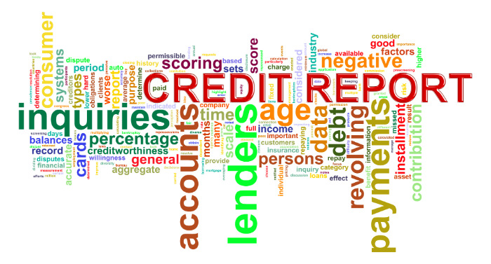 Included In Credit Report