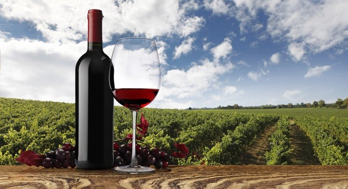 Economics Of Wine Industry