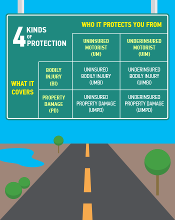 Infographic For Motorist Insurance Guide